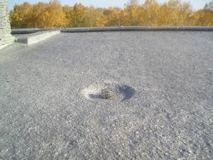 Ремонт мягкой кровли крыши здания