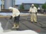 Ремонт и теплоизоляция мягкой кровли здания Аэропорта Толмачево, г. Новосибирск,